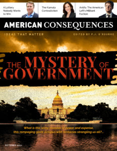 Image result for picture of american consequences The mystery of government