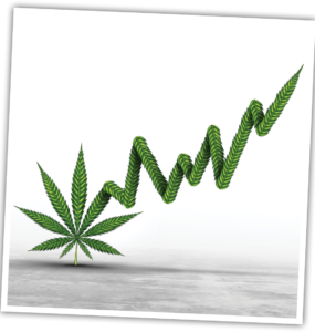 Weed plant growing into a stock ticker.